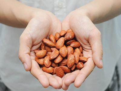 Roasted Almonds Price|Exclusive Exports of Almonds to India